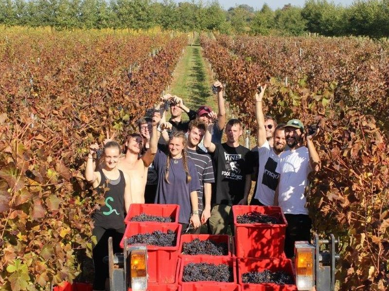 The science behind our bumper harvest